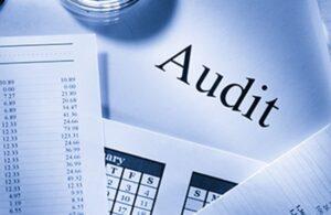Peran Audit Manajemen Fungsi Pemasaran dalam Upaya ...